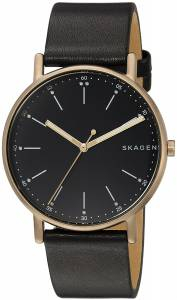 [スカーゲン]Skagen  'Signatur' Quartz Stainless Steel and Leather Casual Watch, SKW6401