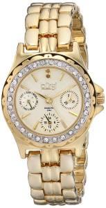 [バージ]Burgi 腕時計 Analog Display Quartz Gold Watch BUR117YG レディース [並行輸入品]