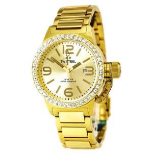 [ティーダブルスティール]TW Steel 腕時計 TW309 [並行輸入品]